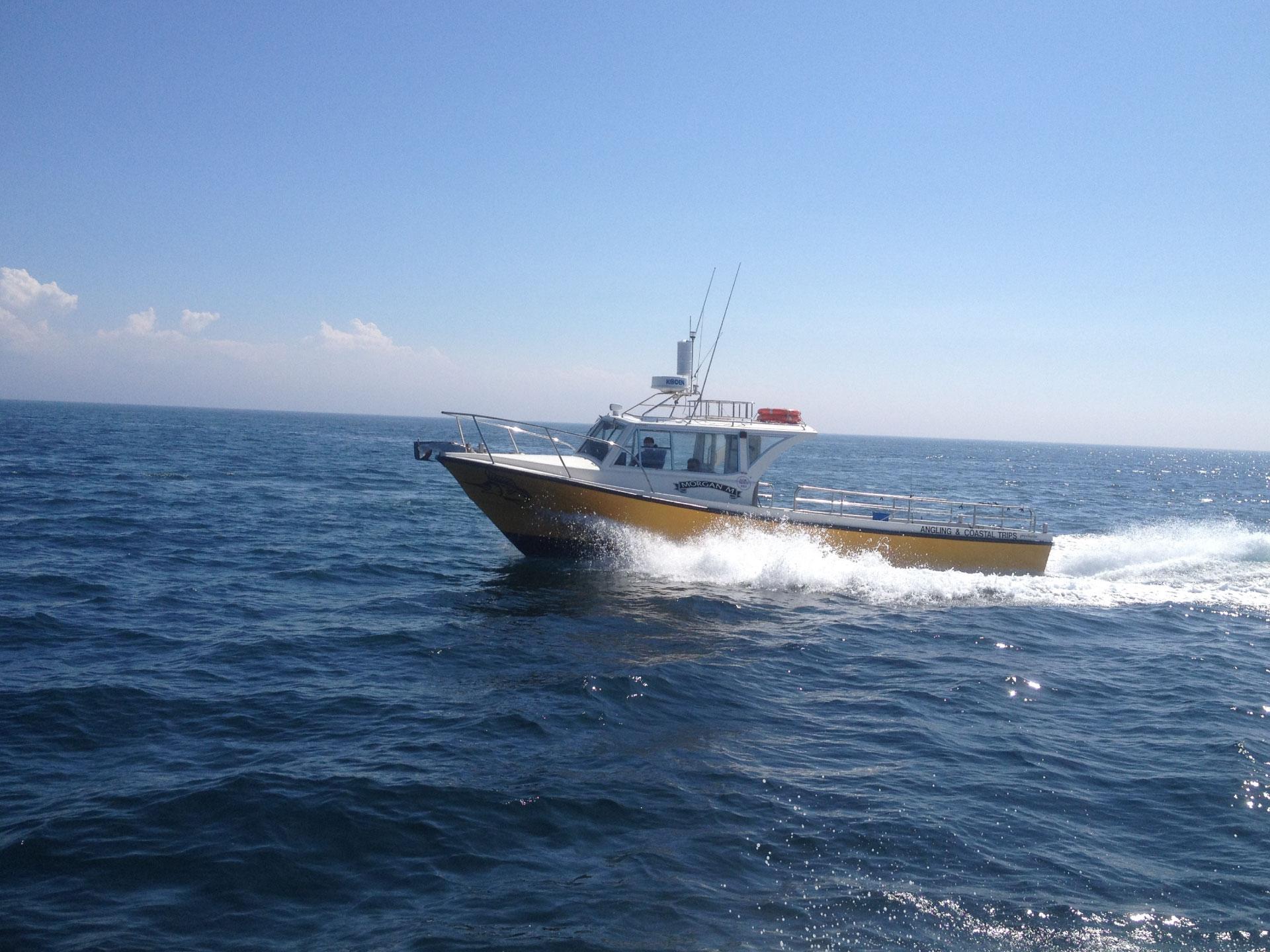 Porlock Weir - Boat Trips